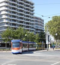 In den Herbstferien werden Gleise und Weichen an der Kreuzung Rheinstraße/Berliner Allee erneuert. (JPG, 3 MB)